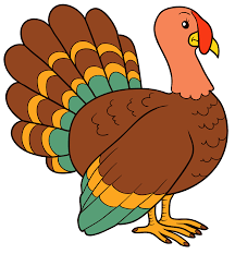 turkey p.png